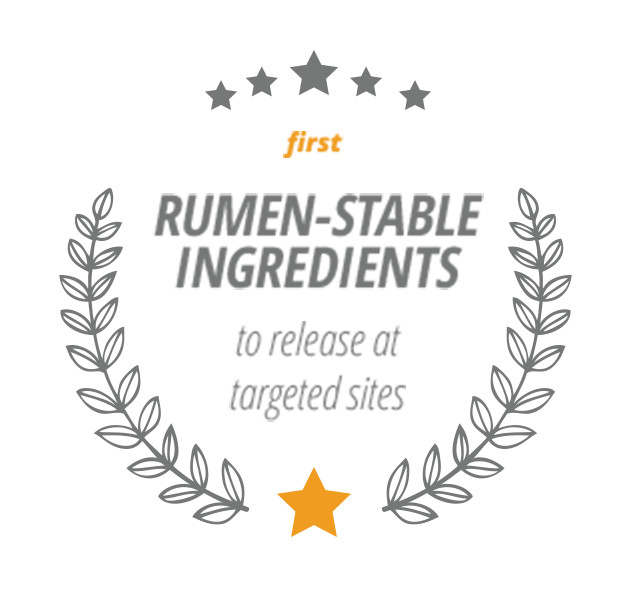 First Rumen-Stable Ingredients to release at targeted sites