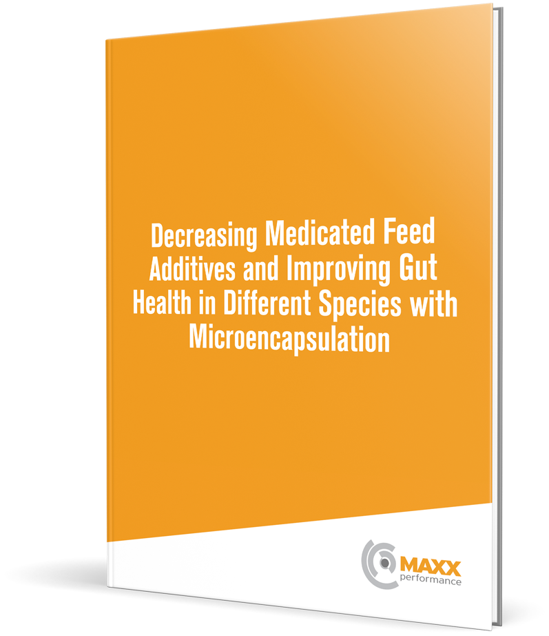 Decreasing Medicated Feed Additives and Improving Gut Health in Different Species with Microencapsulation