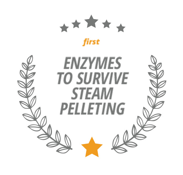 First Enzymes to Survive Steam Pelleting